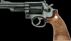 S&W M19